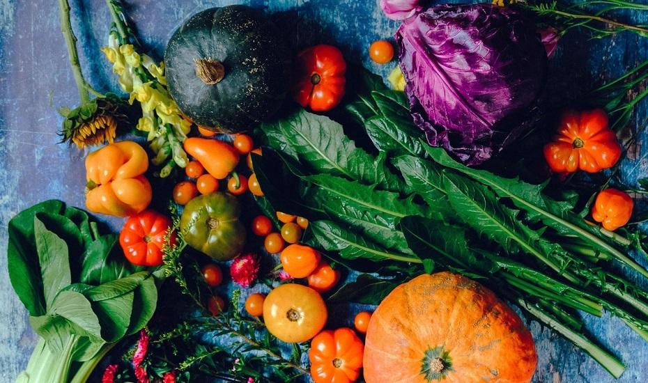Urban Gardening – gemeinschaftlich nachhaltig