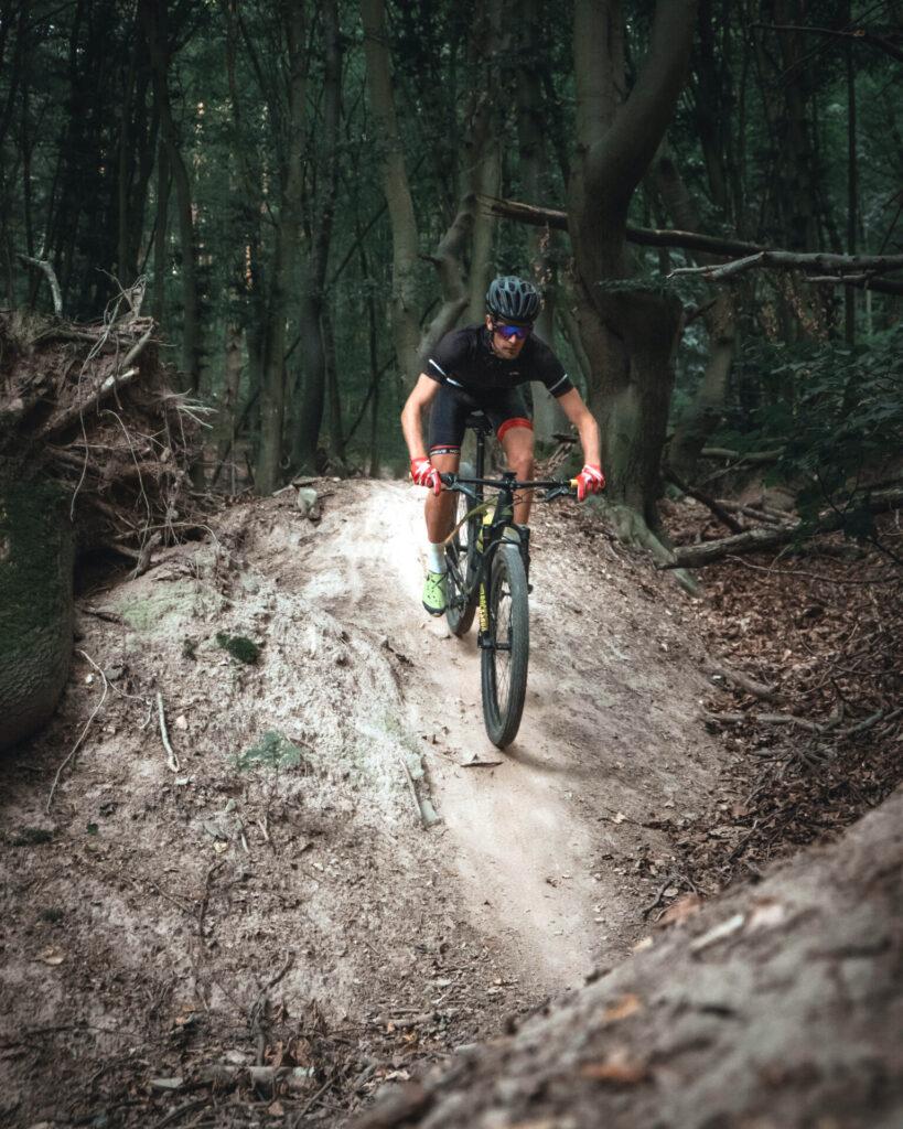 Mountainbiker in Wald auf einem Trail